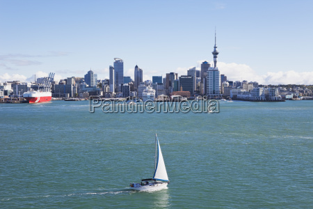 new zealand auckland view of city