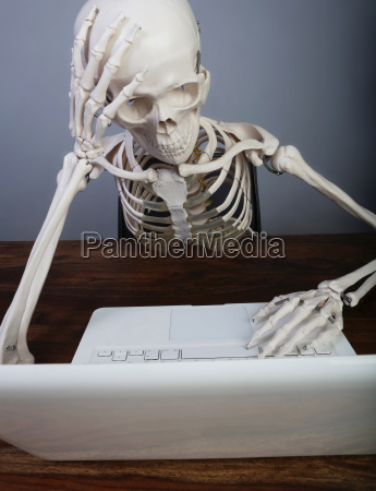 studio skeleton working on laptop