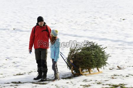 family taking christmas tree on sledge