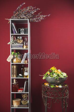 shelf and assortment of medicinal herbs