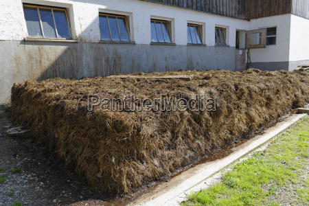 germany dung pile