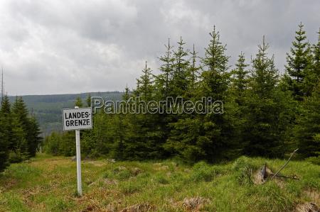 viaggio viaggiare albero orizzonte parco nazionale