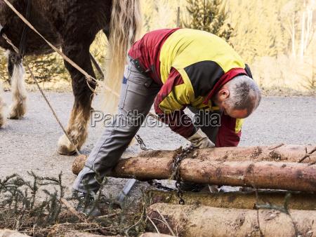 germany muehlenbach logger fastening tree