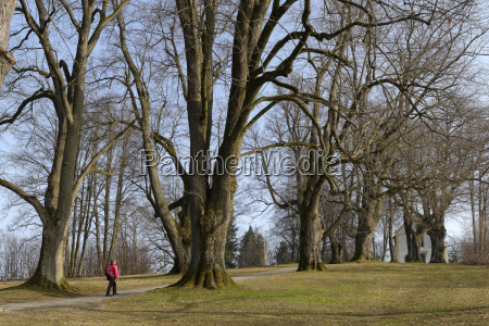 germany bavaria lower bavaria hiker at