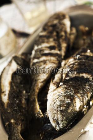 croatia trogir grilled fish in serving