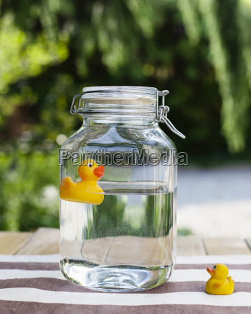 baby rubber duck looking at adult
