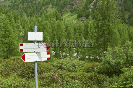 italy empty guidepost in forest of