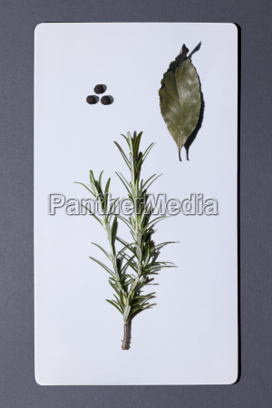 bay leaf and twig of rosemary