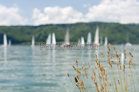 germany baden wurttenberg sipplingen boats in