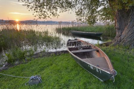 germany baden wurttenberg reichenau island boats