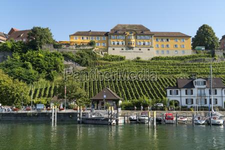 germany meersburg harbour and vineyard