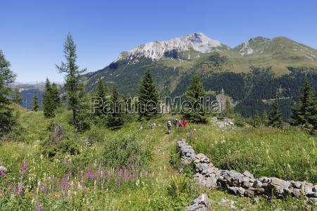 austria carinthia carnic alps hikers at