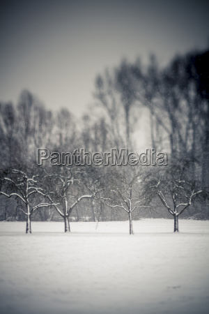 germany baden wuerttemberg vaihingen snow covered