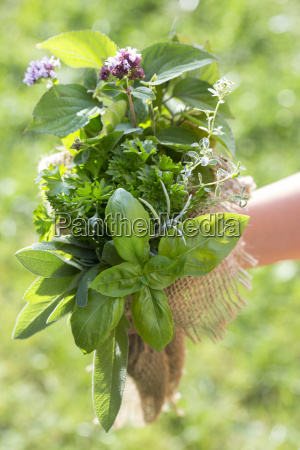 germany bavaria girl holding bunch of