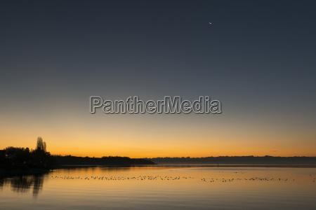 germany hagnau moon over lake constance