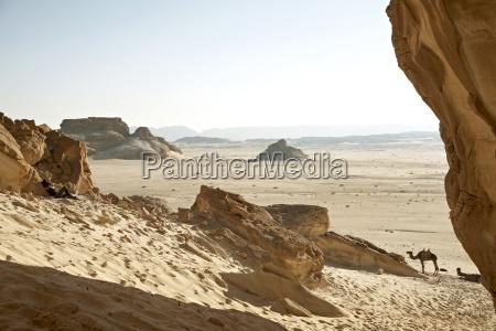 egypt mid adult woman sitting alone