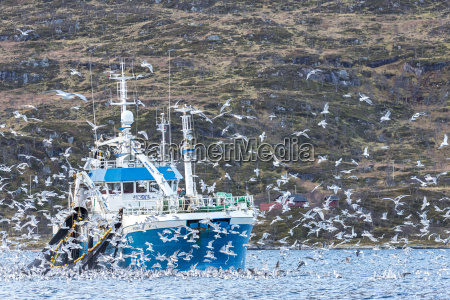 norway troms fishing boat and a