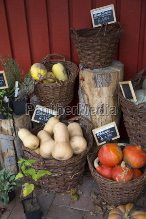 mixed organic vegetables in wicker baskets
