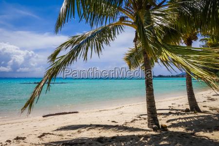 paradise tropical beach and lagoon in