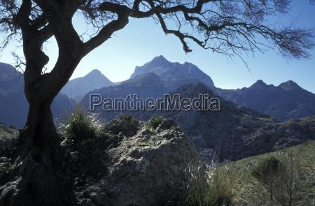 spain mallorca mountain puig roig