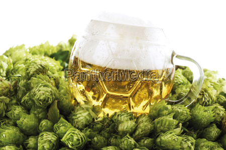 glass of beer in hop wreath