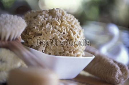 sponge in bowl and brush close