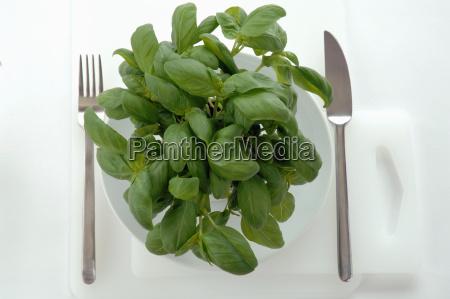 basil leaves on plate
