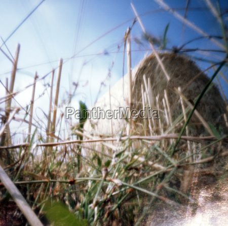 straw bale in field pinhole camera