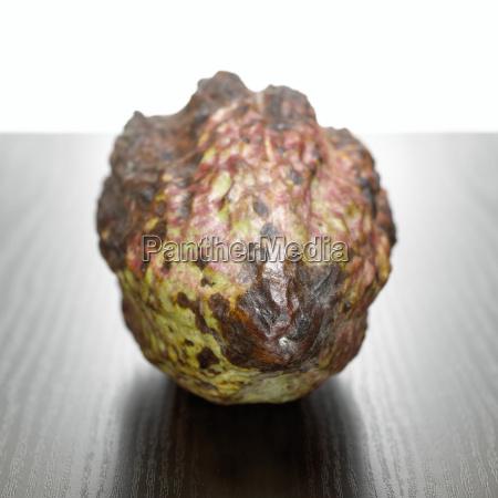 cocoa pod close up