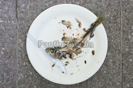 germany hessen frankfurt remains of fish