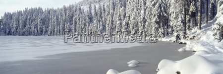 germany baden wuerttemberg schwarzwald mummelsee frozen