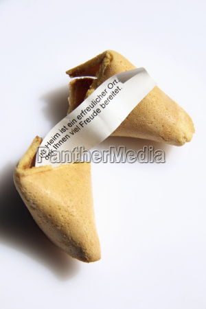fortune cookie close up