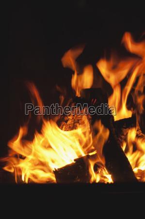 open fire close up