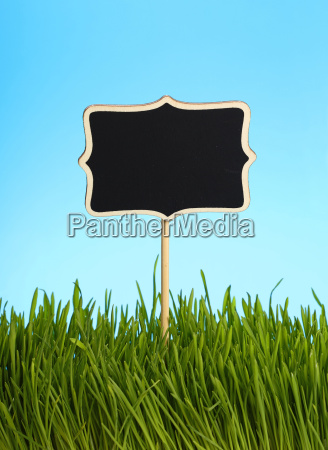 black chalkboard in green grass over