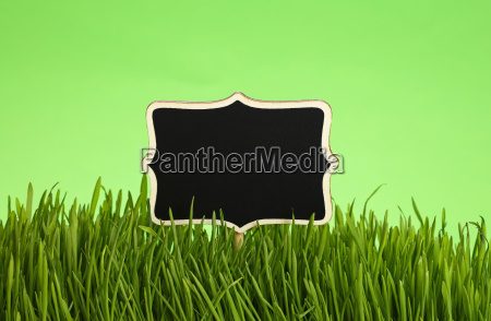 black chalkboard in grass over green