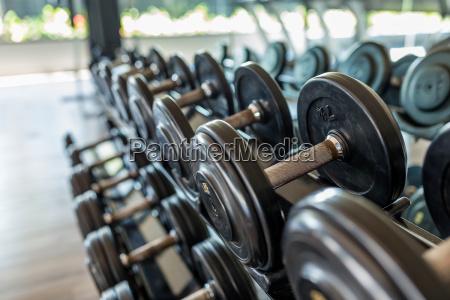 dumbbell in gym