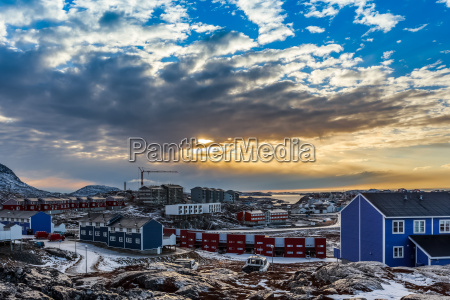 arctic houses growing on the rocky
