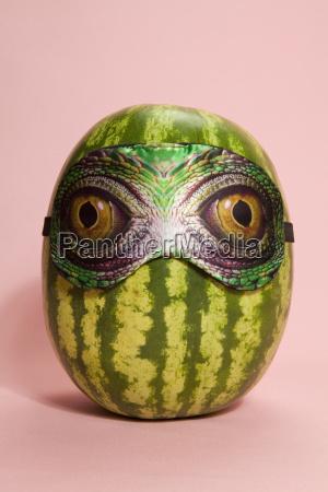 snake watermelon