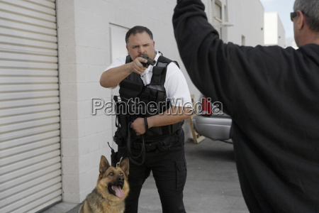 security guard aiming gun at burglar