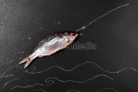fish ram on a black surface