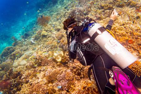 woman diver at tropical coral reef