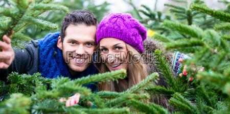 couple having fun at the christmas