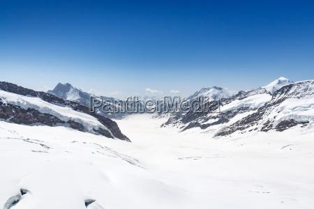 aletsch glacier in the jungfraujoch alps