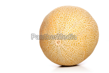studio shot of melons on white