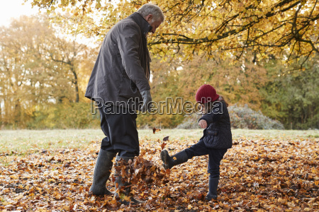 grandfather and granddaughter kicking leaves on