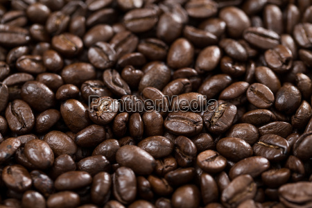 brown coffee bean background