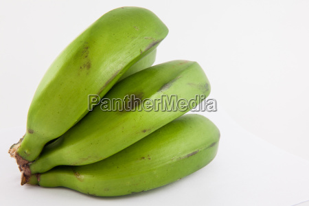 type of banana called guineo or