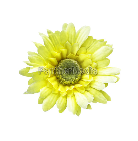 artificial sunflower isolated