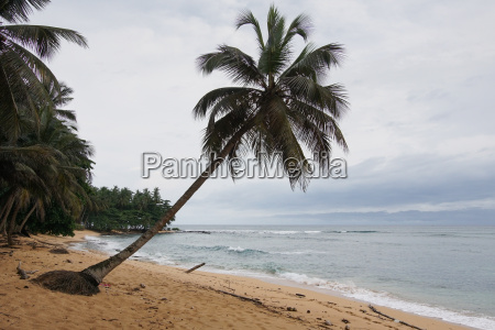 praia inhame on a covered and