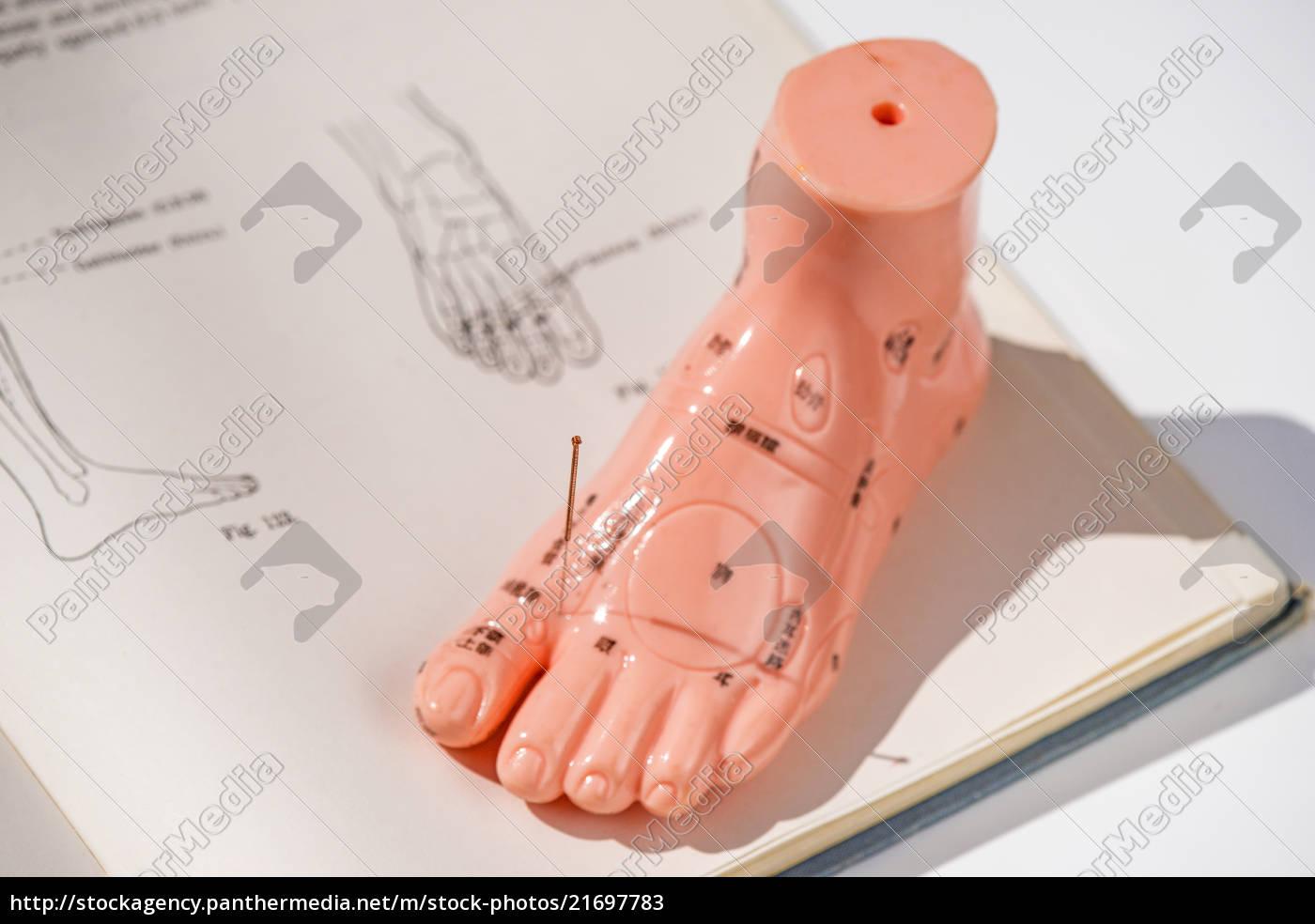 Acupuncture Apprenticeship - Acupuncture Acupressure Points